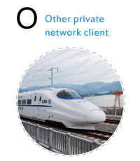 Other private network client